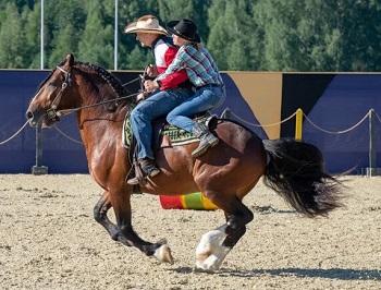 II Международный конный фестиваль «Иваново Поле» в Московской области