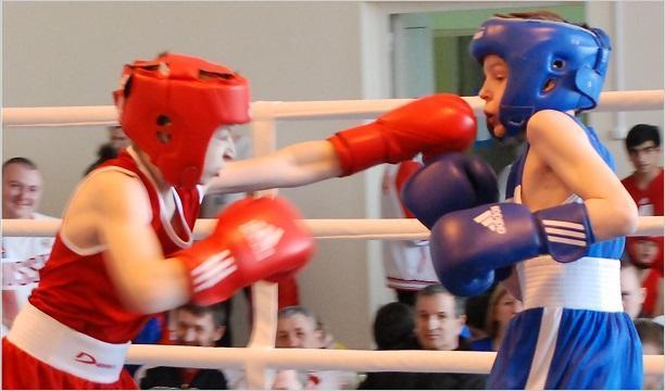 Сексия бокса