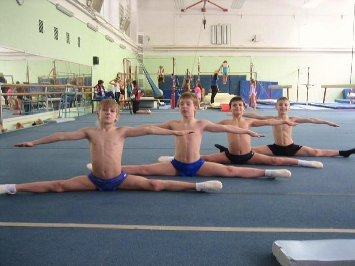 Школа спортивной гимнастики для детей сао как накачать грудь на турнике в домашних условиях